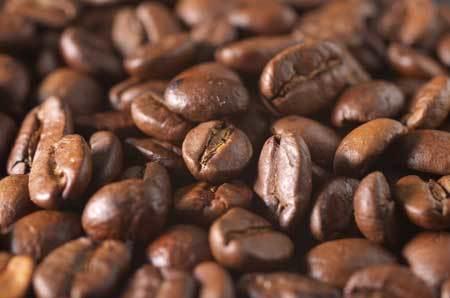 Arabica Coffee vs Robusta Coffee Beans