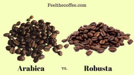 Coffee Characteristics - Conclusion